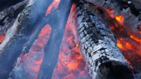 灼烧的火木头和炭烬 免版税图库摄影