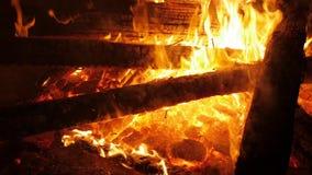 灼烧的火火焰 股票视频