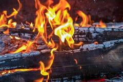 灼烧的火焰的火橙色舌头在被烧焦的委员会的 免版税库存照片