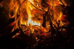 灼烧的火 发怒的篝火在晚上 免版税库存图片