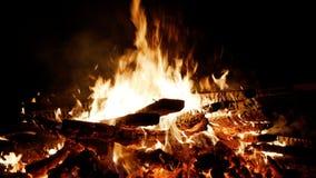 灼烧的火 篝火特写镜头 篝火灼烧的树在晚上 烧的篝火明亮地,热,光,野营 免版税库存图片