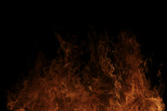 灼烧的火 库存图片