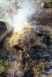 灼烧的猪头发与在宰割前的干燥秸杆 免版税图库摄影