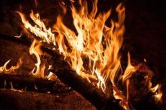 灼烧的篝火夜 免版税库存照片