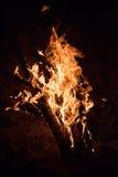 灼烧的篝火夜 免版税库存图片