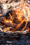 灼烧的纸张 免版税库存照片