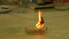 灼烧的纸张 影视素材