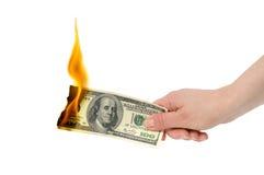 灼烧的美元 库存照片