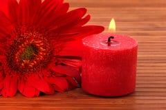 灼烧的蜡烛 免版税图库摄影