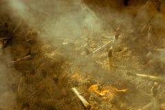 灼烧的香火黏附在著名佛教寺庙Senso籍在浅草,东京,日本 免版税库存照片