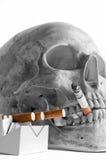 灼烧的香烟头骨 库存照片