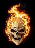 灼烧的头骨 库存照片