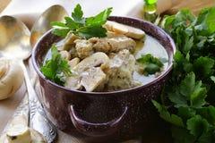 在一个乳脂状的调味汁的炖煮的食物鸡 库存照片