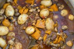 炖煮的食物用土豆胡桃&蘑菇 免版税图库摄影