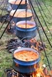 炖煮的食物 免版税库存图片