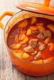 炖牛肉用土豆和红萝卜在红色砂锅 库存照片