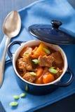 炖牛肉用土豆和红萝卜在蓝色罐 图库摄影