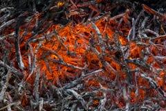 炙热的余烬和灰在火 免版税库存图片