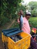 炫耀他抓的鱼的自行车的人 库存照片