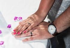 炫耀他们的圆环的新娘和新郎 免版税图库摄影
