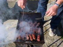 炭渣格栅户外午餐肉去野餐 库存照片