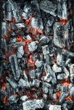 炭烬 免版税库存图片