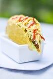 炸玉米饼墨西哥人食物 免版税库存图片