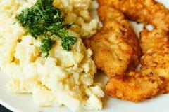 炸肉排和蛋沙拉细节 图库摄影
