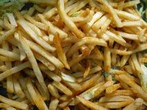 炸薯条和素食者 免版税库存照片