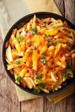 炸薯条的部分用熔化切达干酪、烟肉和pa 免版税库存图片