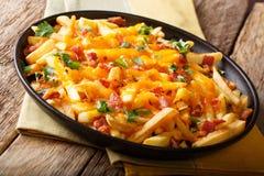 炸薯条的部分用熔化切达干酪、烟肉和pa 图库摄影