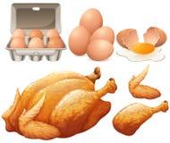 炸鸡和新鲜的鸡蛋 库存图片
