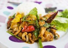炸鸡混乱油炸物用葱、腰果和甜椒 库存图片