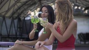 点击玻璃喝coctails的两个亭亭玉立的俏丽的女孩并且一起有美好时光在休息室 女朋友二 股票视频