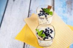 点心用自然酸奶、柠檬酱和蓝莓 库存图片