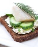 点心用鲱鱼,乳脂干酪和黄瓜 库存图片