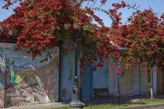12点活字历史的村庄在阿塔卡马沙漠 库存图片