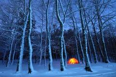 点燃帐篷在Nebrodi公园斯诺伊森林,西西里岛 库存照片