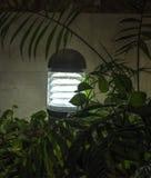 点燃电子卤素反光板的现代庭院 免版税库存照片