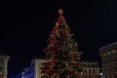 点燃罗马树,在威尼斯广场 光和红色和黄色球装饰树 免版税库存照片