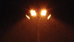 点燃落的雪的街灯 股票视频