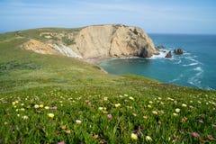 点雷耶斯国家海滨在加利福尼亚 免版税图库摄影