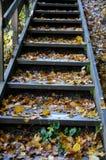 锻炼台阶在10月 库存图片