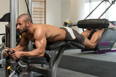 锻炼说谎的腿卷毛锻炼 免版税库存图片