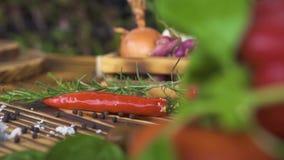炽热辣椒,在菜背景的草本调味料的关闭 新鲜蔬菜和香料意大利烹调的 影视素材