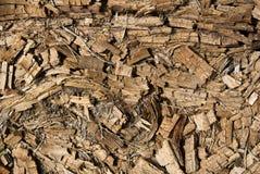 烂掉的干燥腐朽的被击碎的木背景 免版税库存图片