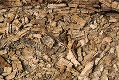 烂掉的干燥被击碎的腐朽的木背景 免版税图库摄影