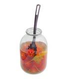 烂醉如泥的蕃茄和开槽的匙子在玻璃瓶子 库存图片