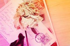 烘干与手写的玫瑰色和老明信片 柔光,葡萄酒 免版税库存图片