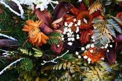 烘干五颜六色的花和叶子,浪漫花卉背景 免版税库存图片